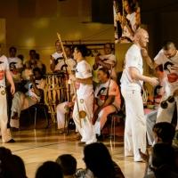 Skandinavisk Capoeiratræf 2013