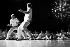 Skandinavisk Capoeiratræf 2003